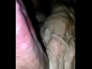 Viserrys verkkoseura butt seksiä