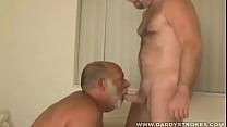 Josh And Lars - Bearish Daddy Sucking Admirers Cock