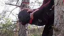 Tied up to a tree outdoor on sexy clothes, wearing pantyhose and high ankle boots heels, rough fuck