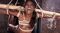 Stunning ebony pussy fucked in bondage porn image