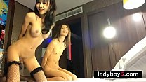 Two ladyboy babes in a threesome with a very lucky guy