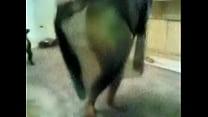 Arab big ass صورة
