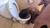 Desi whore gets walked like a dog to the toilet to get her face pissed on and sucks cock