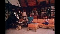 15391 Summer of '72 (1982) Classic Porno [Loni Sanders, Lisa De Leeuw, Annette Haven] preview