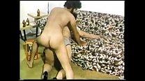 The Great Pornstars Cut - Vanessa del Rio - Vol. II