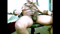 Gay latin bear