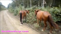 14147 HD Heather Deep 4 wheeling on scary fast quad and Peeing next to horses in the preview