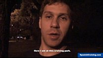 Blow job at the park