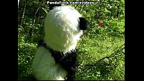 7355 Little Red Riding Hood fucking with Panda in the wood preview