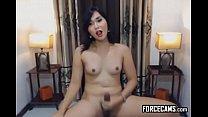 Fleshly Amateur Asian Shemale Prostitute