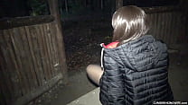 Dogging wife gangbanged and creampied at the pi...
