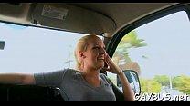 Wild weenie riding inside a car