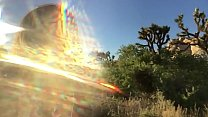felicity feline rides motorcycle to joshua tree and plays outside Vorschaubild