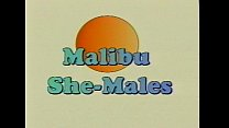 Metro - Malibu Sme Males - Full movie