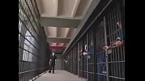 belladonna jail gangbang pornhub video