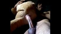 fucking bear