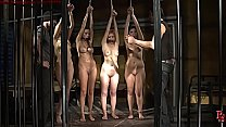 Slave auction II. First slave Bijou is sold.