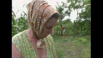 Un Tanara Fute Tare O Batranica De 67 De Ani In Lanul De Porumb