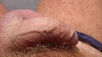 Relaxed cock in the sun