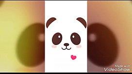 Panda - Edu Chociay