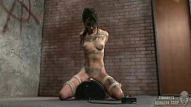 Bellport homemade porn videos