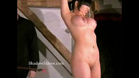 Tigerrs asian electro bdsm and oriental cattle prod t.