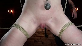 Shaved pussy blonde is toyed on hogtie