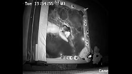 BJ in Hot Tub on security camera. CIM and Throatpie!