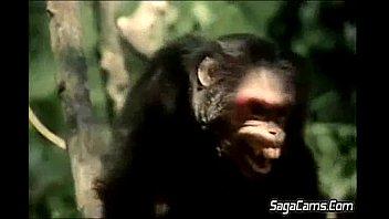 Tarzan 2.FLV