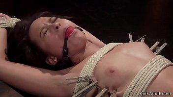Slave spanked in doggy device bondage
