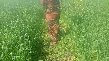 गेहूँ के खेत मे रगड़ के चोद देहाती विडियो