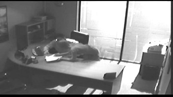 Office Tryst Gets Caught On CCTV And Leaked thumbnail