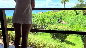 honeymoon luxury paradise hotel window fuck - projectfundiary