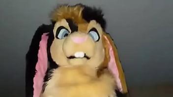 Bouncy bunny ride...