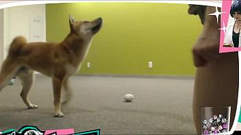 Braless Twitch Streamer Plays With Doggo