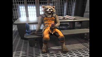 Raccoon Porn