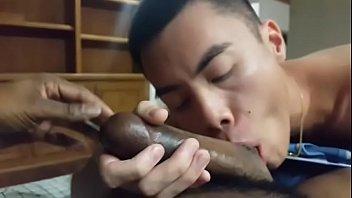 Amador - Japinha mamando a piroca do negão