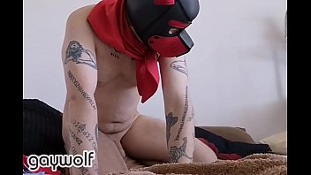 Dog gay guide man woof Camboy bitch collection vi