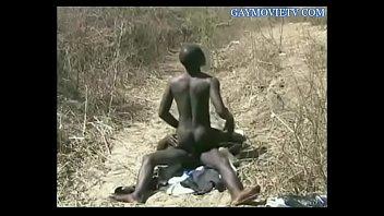 Gay Tribal