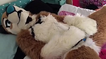 Fursuit sex videos Freyashibe - twitter vibrator full