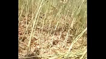खेत मे चोदाई