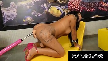 Dream Tranny - Lustful Shemales Vs Fucking Machines Compilation Part 5