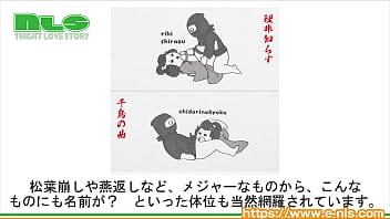 【アダルトグッズNLS】ニッポンの手ぬぐい 秘技!四十八手<紹介動画>