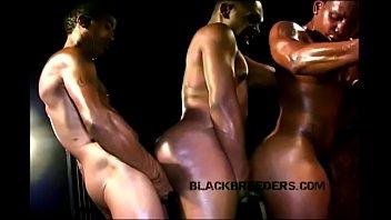 BLACKBREED RAW