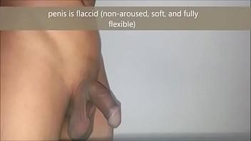 Complete penis erection process educational - YouTube Vorschaubild