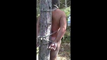 Suplicio en el bosque