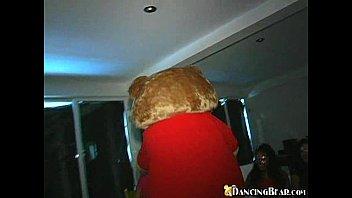 Dancing Bear Party! 5 min