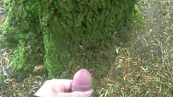 Man pissing on a tree 13 sec