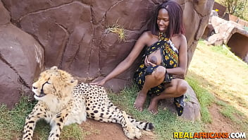 Backseat Fuck A Wild African Safari