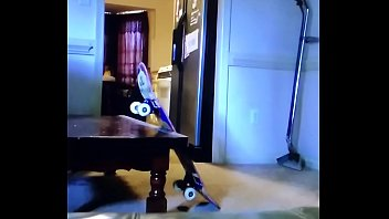 Tom Bur Man skateboards through the doornos with no drawers staring Tom The Bomb and Tommy B